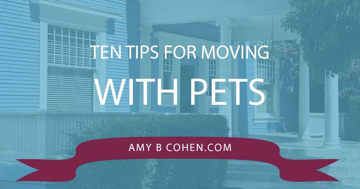 ten tips for moving with pets